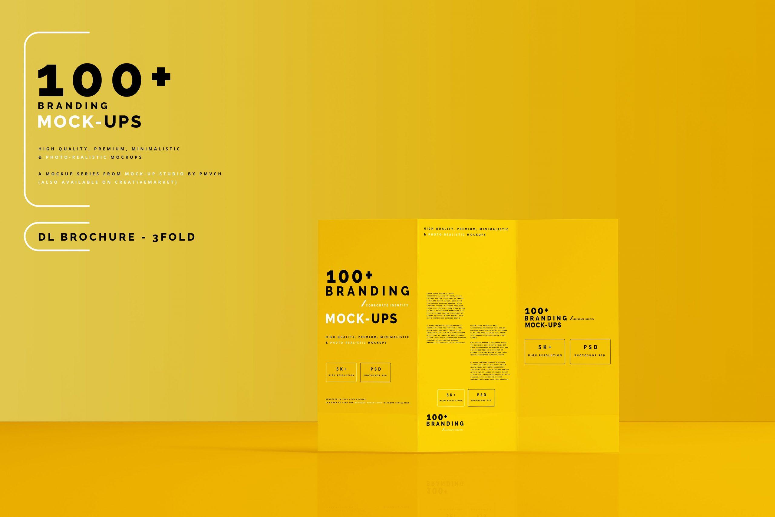 VI样机:100多个宣传册书籍瓶子名片CD封套咖啡杯化妆品海报横幅高分辨率品牌PSD样机(4248)插图(17)