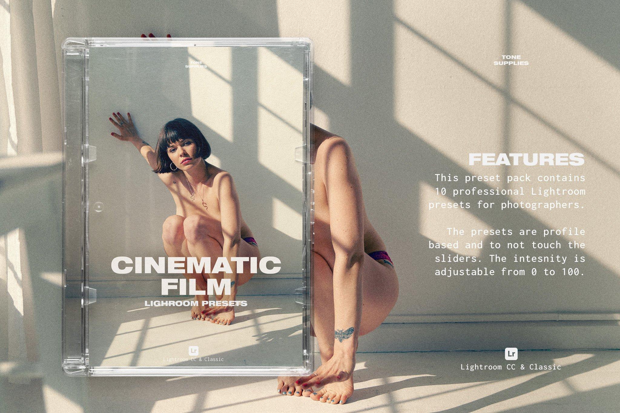 TONE SUPPLIES 10 个专业的电影胶片Lightroom预设(4344)插图(1)